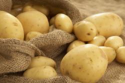 Картофель от растяжения связок